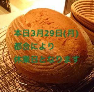 8095898D-DBA8-47EA-963C-BD31AF625A4A